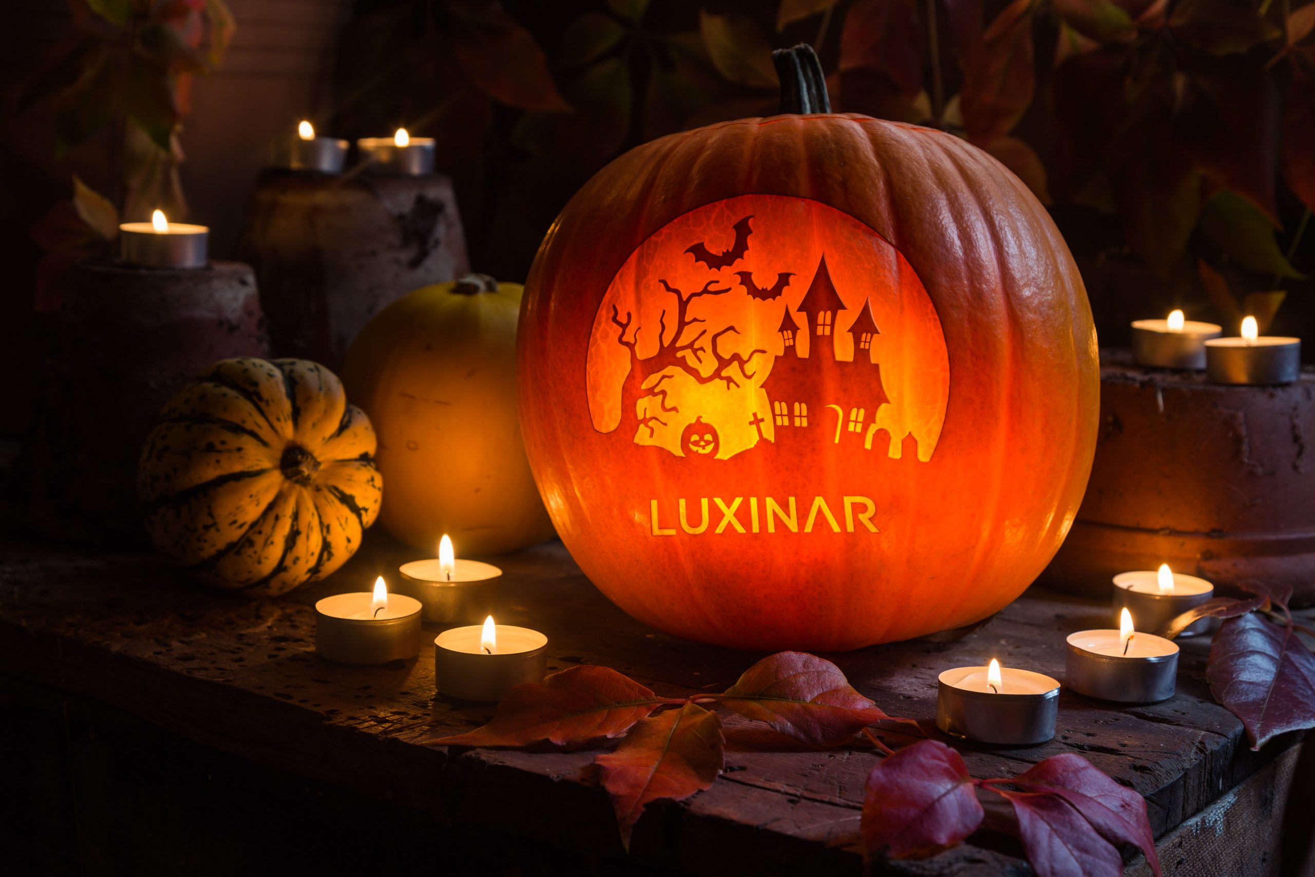 CO2 laser engraving on a pumpkin for Halloween